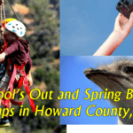 School's Out and Spring Break Camps in Howard County Maryland 2017