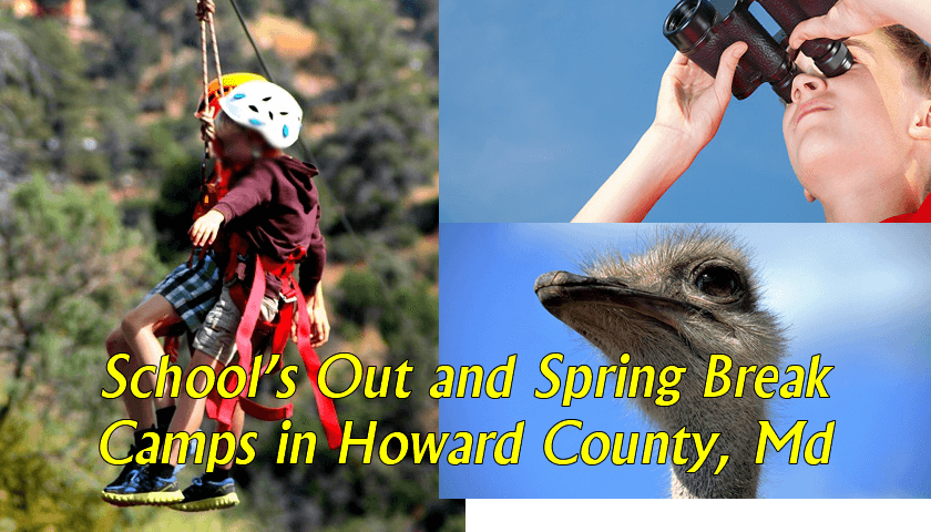 schools closed camps spring break howard county md